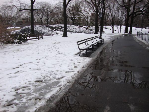 Tudo branquinho no Central Park - lindo em qualquer estação